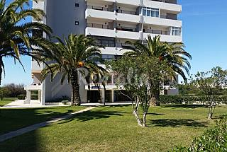 Apartment for 2-3 people only 50 meters from the beach Algarve-Faro