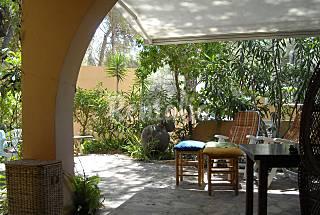 Helechos - Apartment in Ibiza Ibiza