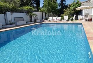 Charmante villa a seulement  100 m de la plage Malaga