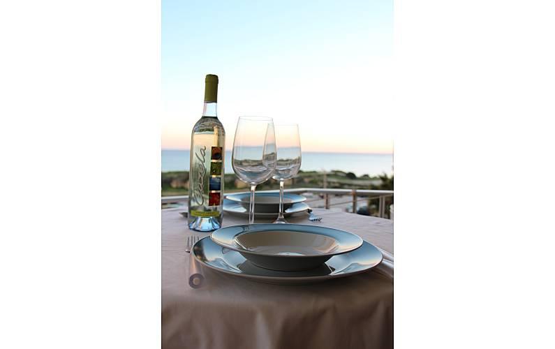 2 Vistas da casa Algarve-Faro Silves Apartamento - Vistas da casa