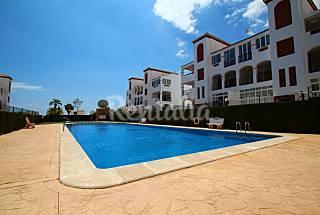 Apartamento en alquiler a 1.8 km de la playa Alicante