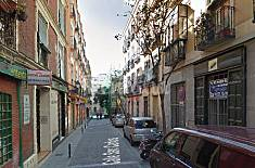 Studio renovated in Lavapies Madrid