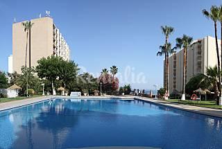 Estudio en Primera Línea de Playa Benalmádena Málaga
