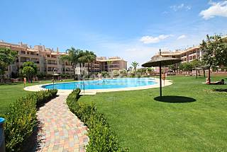 Lovely apartment with large swimming pool area Alicante