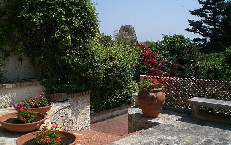 Luminosa Giardino Lecce Melendugno villa - Giardino