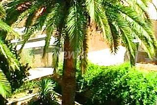 Casa para 8-10 personas a 1000 m de la playa Olbia-Tempio