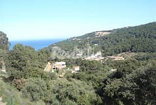Apartamento en alquiler a 2 km de la playa Girona/Gerona