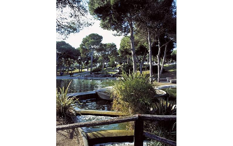 Magnifico Actividades cercanas Alicante Guardamar del Segura Apartamento - Actividades cercanas