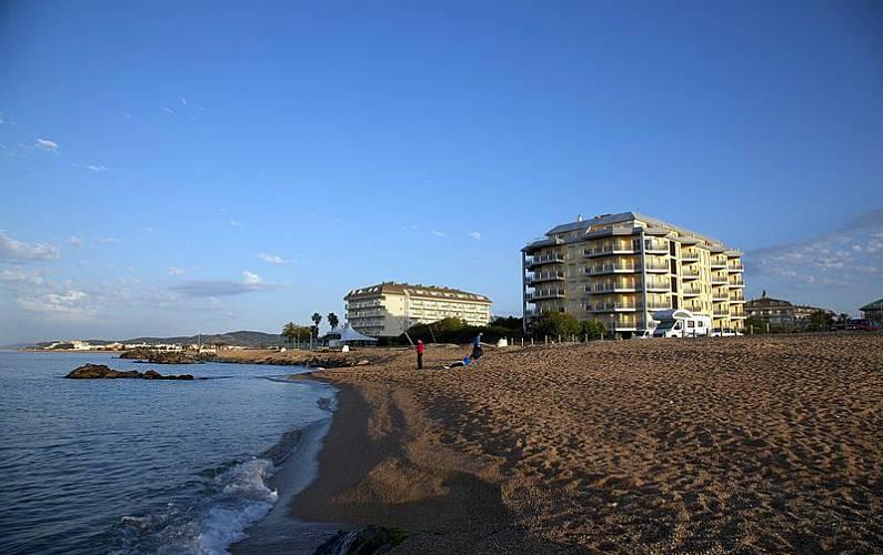 appartamenti in affitto in prima linea di spiaggia zona