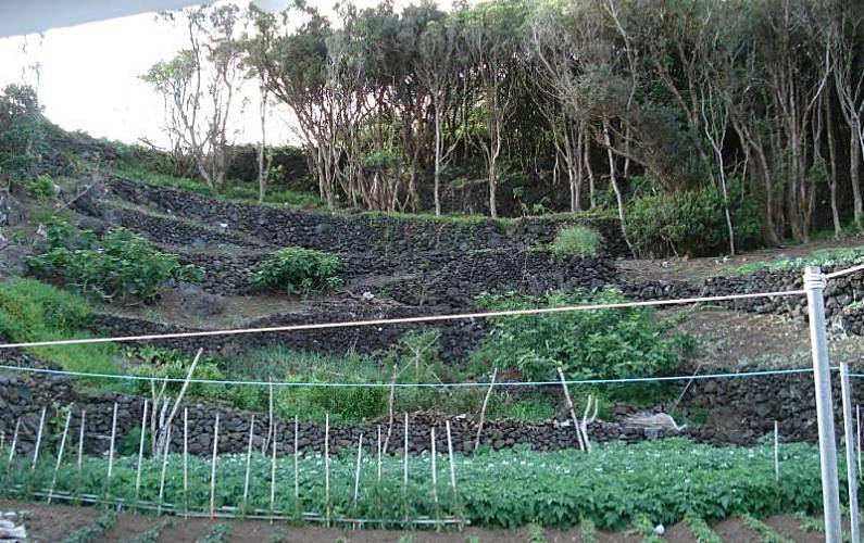 2 Jardín Pico Lajes do Pico Casas - Jardín