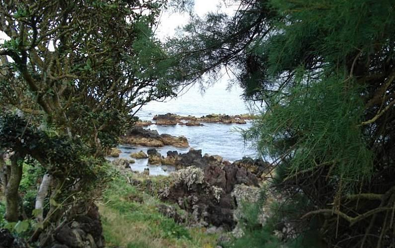 2 Environment Pico Island Lajes do Pico homes - Environment