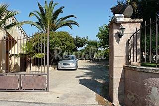 House for 8-10 people only 1000 meters from the beach Majorca