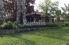 Casa in affitto - Bologna Bologna