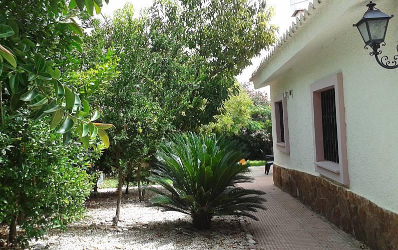 Villa Garden Valencia Chiva Countryside villa - Garden