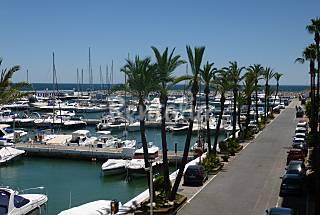 Appartement ds le port de plaisance de la Duquesa Málaga