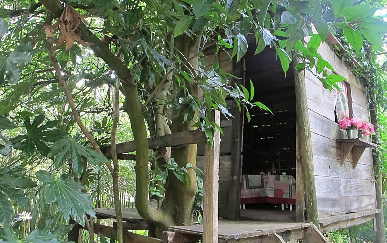 Casa Exterior da casa Braga Vila Nova de Famalicão Casa rural - Exterior da casa