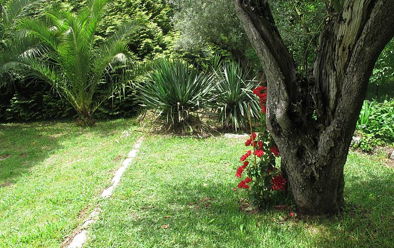 Casa Jardim Braga Vila Nova de Famalicão Casa rural - Jardim