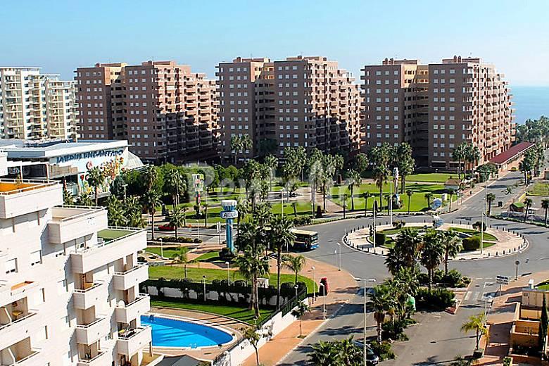 Apartamento en alquiler en oropesa del mar orpesa oropesa del mar orpesa castell n castell n - Alquiler apartamentos oropesa del mar ...