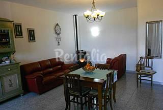 Casa en alquiler a 30 m de la playa Olbia-Tempio