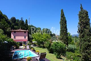Charming Villa in Versilia's Hills, pool and wifi Lucca