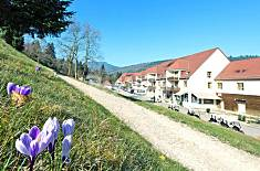 House for 4 people in Haut-Rhin Haut-Rhin