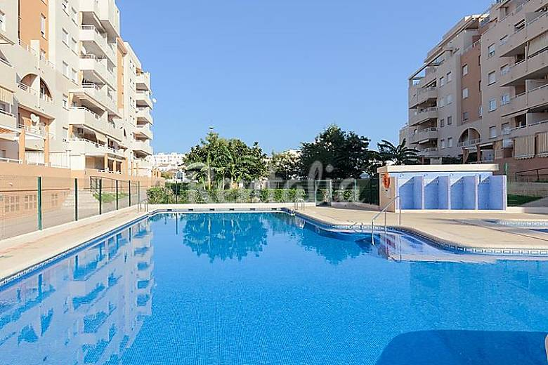apartamento en alquiler con piscina daim s valencia