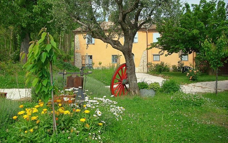 Casa dei ciliegi appartamento piano terra montalfoglio for Piano terra della casa