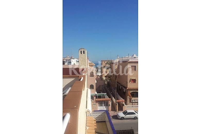 Apartamento en alquiler a 100 m de la playa la mata torrevieja alicante costa blanca - Alquilar apartamento en torrevieja ...