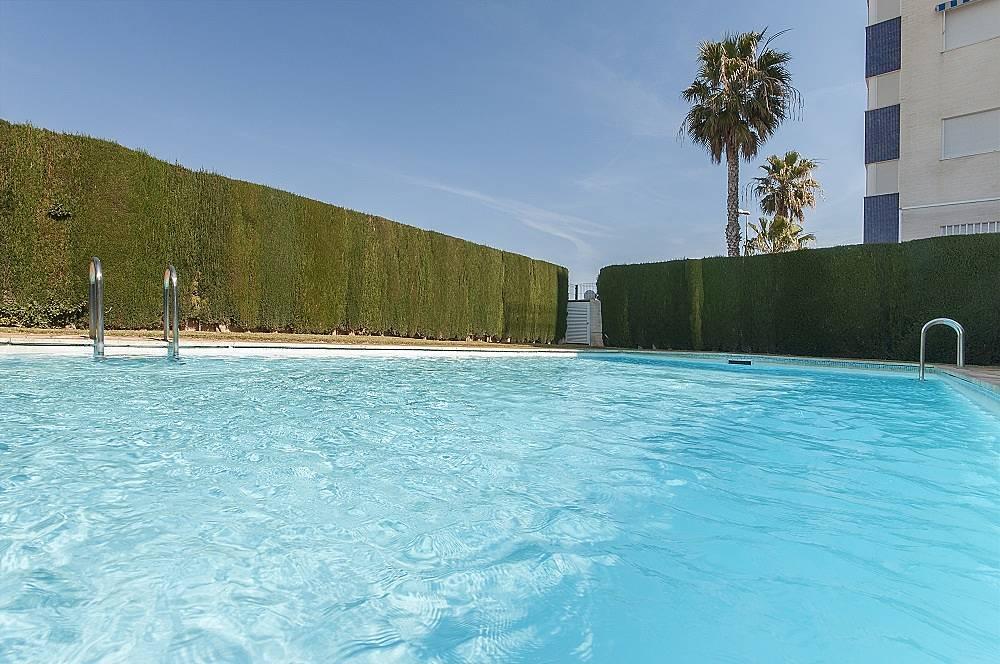 Ribereta apartamento para 6 personas en oliva oliva playa oliva valencia - Alquiler de apartamentos en oliva playa ...