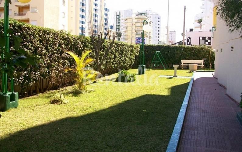 Apartamento para 7 personas en grau i platja grau i platja gandia valencia - Apartamentos en gandia baratos verano ...