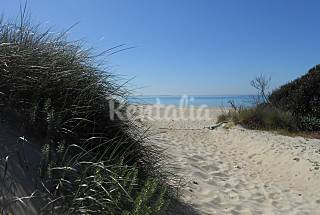 Apartment for 4-7 people on the beach front line Lecce
