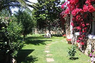 4 Apartamentos a 2 km de la playa Olbia-Tempio