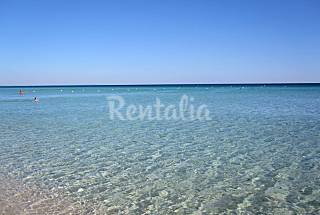 House for rent 12 km from the beach Lecce