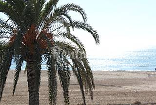 La casa azul Barcelona