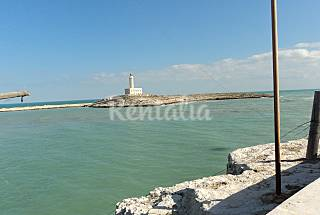 Apartments for 2-6 people only 700 meters from the beach Foggia