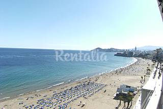 Apartamento de 1 habitacion en 1a línea de playa Alicante