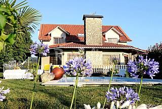 Villa with 5 bedrooms in Braga Braga