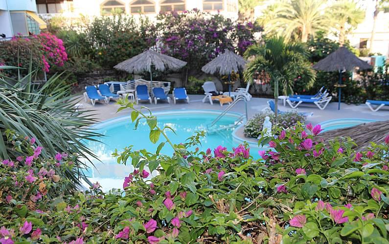 Pretty Swimming pool Gran Canaria San Bartolomé de Tirajana Apartment - Swimming pool