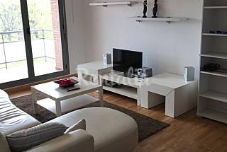 Apartamento en alquiler en La Rioja Rioja (La)