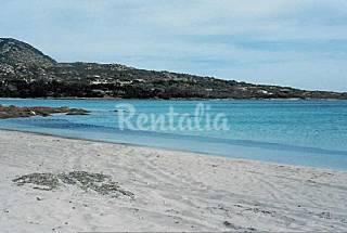 Villa en alquiler a 400 m de la playa Olbia-Tempio