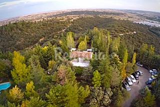 Villa with 3 bedrooms in San Agustín de Guadalix Madrid
