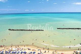 Pleasant apartment only 30 meters from the beach Pescara