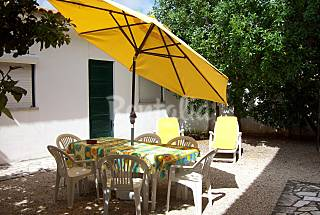 2 villas with 2 bedrooms in Alcabideche **Contratação Online**   Lisbon