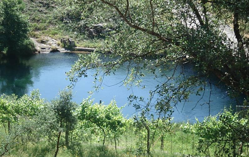 Maravilhosa Arredores Viana do Castelo Viana do Castelo Villa rural - Arredores