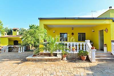 Villa Salento in affitto a 4000 mt dal mare. Brindisi