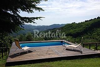 Villa de 3 habitaciones en Lucca Lucca