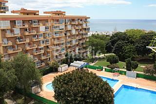 Excelente estudio a 400 m de la playa Málaga