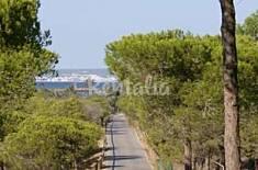 Bajo con terraza de 54 m2 al lado de la pinada  Alicante