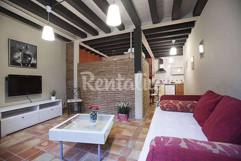 22 Appartamenti in affitto a Haro Rioja (La)