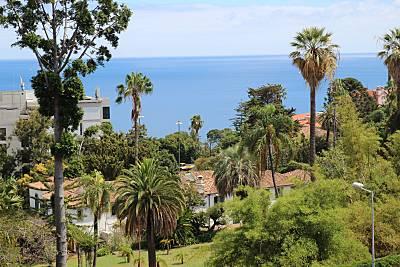 Apartamento T3 Moderno Com Vista Mar  Ilha da Madeira